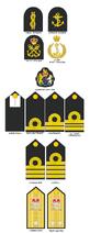 Papua New Guinea Defence Force-Maritime Element