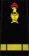 Bspp12