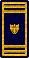 AVCG 02