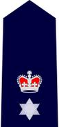 NSWPol-superintendant