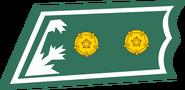 Luutnantti kauluslaatta