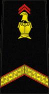 Bspp06