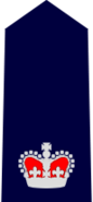 NSWPol-chiefinspector