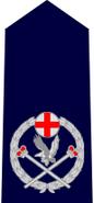 NSWPol-astcommissioner
