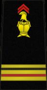 Bspp11