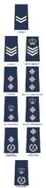 Solomon Islands Royal Police