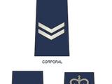Royal Solomon Islands Police