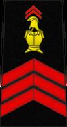 Bspp04
