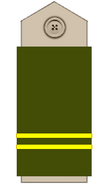 Sq-rank-sgt