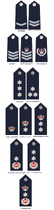 Papua New Guinea Royal Constabulary (2000-present)