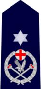 NSWPol-srastcommissioner