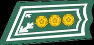 FIN-eversti