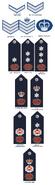 Papua New Guinea Royal Constabulary (1975-2000)