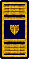AVCG 05