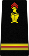 Bspp10