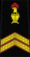 Bspp07