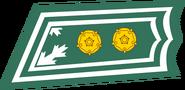 FIN-everstiluutnantti