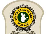 Bon Cop, Bad Cop (film)