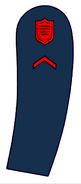 Usanswc-pvt1