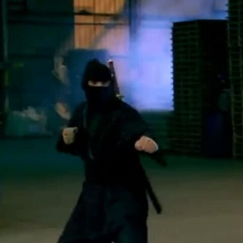 The Ninja facing <a href=