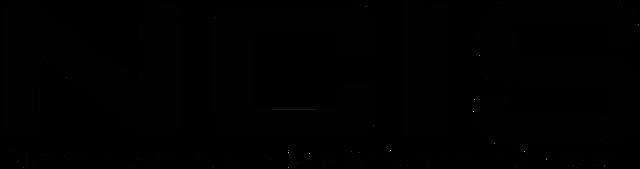 File:NCIS logo.png