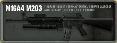IMIC M203