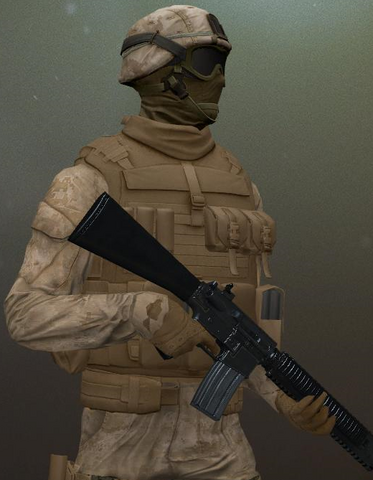 File:INS Security Rifleman.png