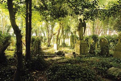 Ravenwood-cemetery2