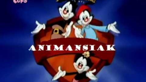 Animaniacs intro Albanian
