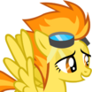 Spitfire (My Little Pony Friendship Is Magic) - head