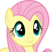 Fluttershy (My Little Pony Friendship Is Magic) - head