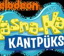 Käsna-Kalle Kantpüks (TV3)