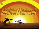 Shëtitësi i universit/Gallery