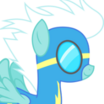 Fleetfoot (My Little Pony Friendship Is Magic) - head