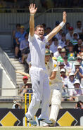 Ashes 2013-14 3rd test.3