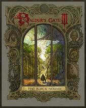 Baldur's Gate III The Black Hound