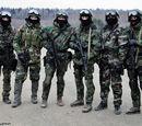 Special Operations Brigades