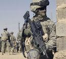 419th Airborne Regiment