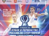 2018 Russian Cup