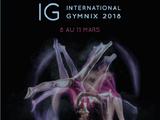 2018 International Gymnix