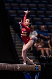 Nguyen2016classics