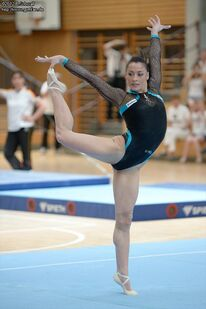 Ponor2012ger-gbr-rou