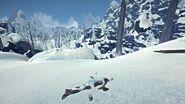 Echo Peak West 04
