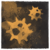Infection risk icon