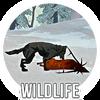 Wildlife portal