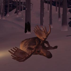 Deadmoose