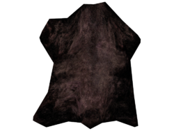 Cured Black Bear Hide