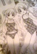 Imari & Sayoka shukuchi 2