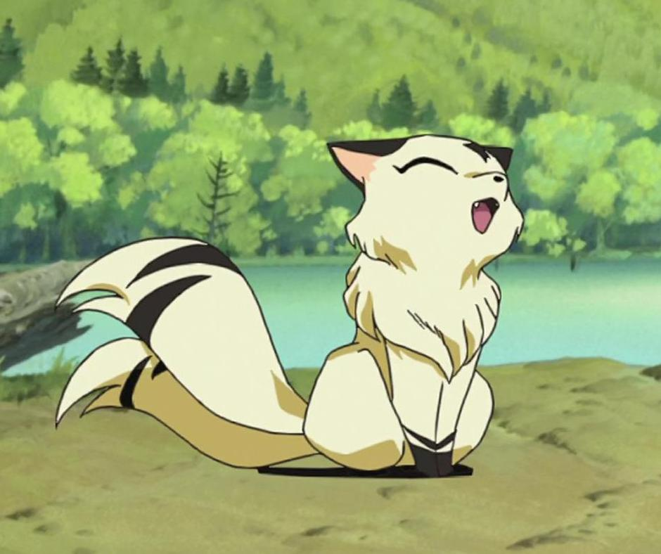 Kirara | InuYasha | FANDOM powered by Wikia