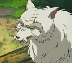 Wolf Elder Inuyasha Fandom Powered By Wikia